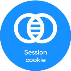 Session cookie